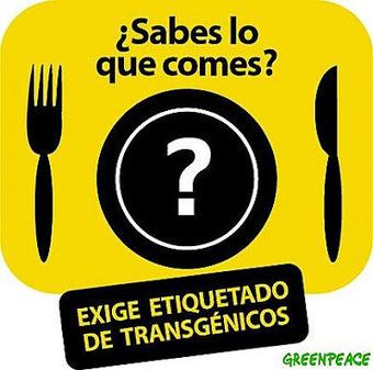 Centro SATORI - Artículos y Colaboraciones: Los Alimentos Transgenicos & Sus Efectos En La Salud   Alimentos Transgenicos y Consumo Responsable   Scoop.it
