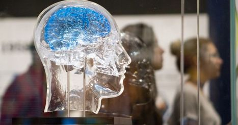 Researcher proposes method for growing brain cells in 3D | Salud Publica | Scoop.it