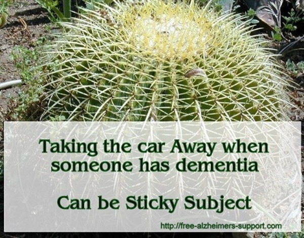How to take the Car Away when someone has Alzheimers dementia | Alzheimer's Support | Scoop.it