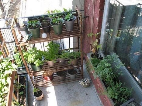 Comment créer un jardin vertical potager ou d'agrément ? | Future culture | Scoop.it