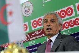 L'Algérie rêve d'un exploit, et Coach Vahid y croit   Blogofoot   Scoop.it