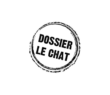Philippe Geluck - Le Chat - Home | Chats | Scoop.it