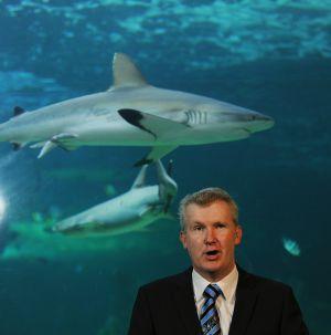 Australia creará la mayor red de reservas marinas del mundo | Planeta Tierra | Scoop.it