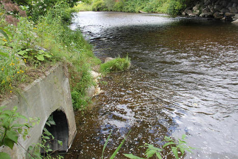How Soon Should Public Be Notified When Sewage Spill Occurs? VT Senate Weighs Options | Lake Champlain Life | Scoop.it