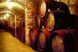 Wijn uit Sicilië wijnhandel Buonsenso importeur van fijne wijnen en delicatessen | Sicilian wine online | Scoop.it