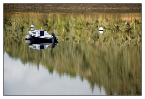Bretagne - Finistère :  réflexion matinale   photo en Bretagne - Finistère   Scoop.it