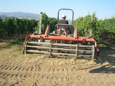 Vintage 2010 Brunello: Tilling the earth to maintain humidity | Grande Passione | Scoop.it
