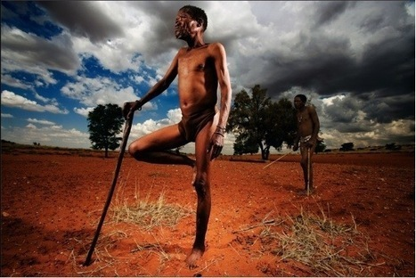 Incredible Photography by Brent Stirton | Source of your inspirations | Scoop.it