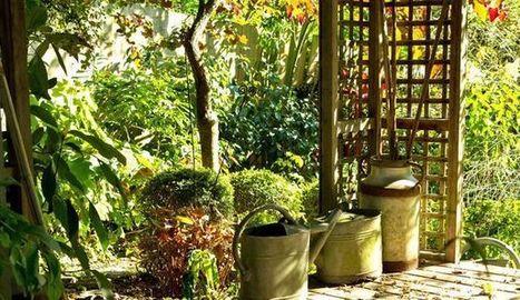 Jardin bio : les erreurs à éviter pour jardiner   Le jardin par Maison Blog   Scoop.it