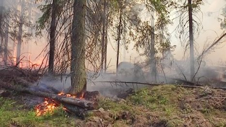 Smoke from Russian fires reaching Finland | Finland | Scoop.it
