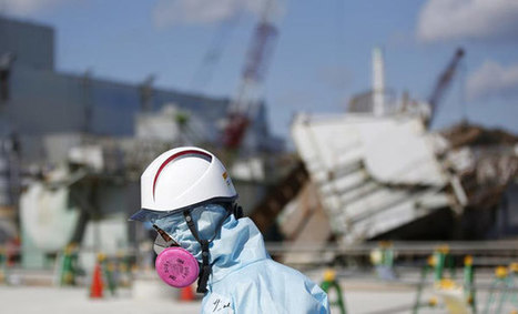 Fukushima impact unprecedented for oceans: US expert | Fukushima | Scoop.it