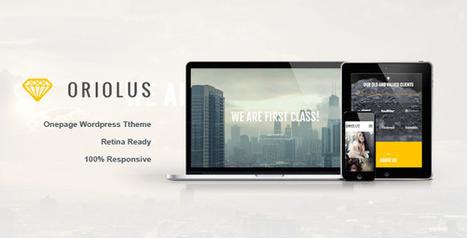 Oriolus –  Responsive Onepage WordPress Theme (Portfolio) | Best HTML Themes | Scoop.it
