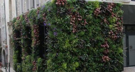 Le mur végétal des Fleurines en vedette | L'info tourisme en Aveyron | Scoop.it