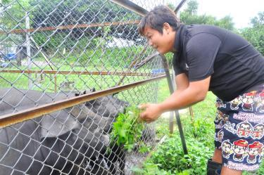Pig farmer turns to animal rights - Taipei Times | Animals R Us | Scoop.it