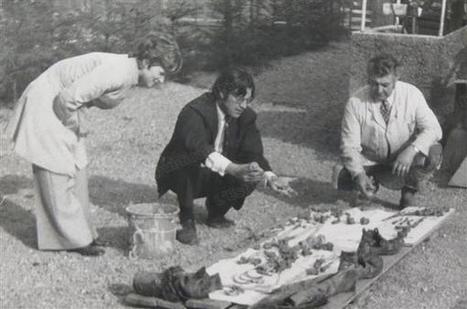 A la Une   Belfort : des ossements de soldats de la première guerre mondiale depuis 40 ans dans le garage - L'Est Républicain   Théo, Zoé, Léo et les autres...   Scoop.it
