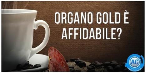 Organo Gold è Affidabile? Ecco Come La Penso Io! | Organo Gold - Distributore Indipendente | Scoop.it