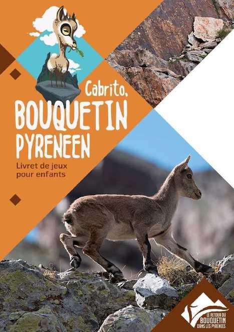 Cabrito, un livret de jeu sur le Bouquetin ibérique | Vallée d'Aure - Pyrénées | Scoop.it