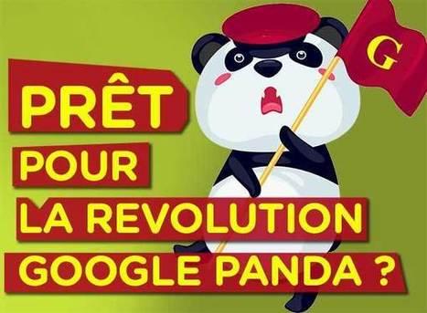 Google Panda change le référencement naturel SEO et le marketing SEM | Communication 2.0 et réseaux sociaux | Scoop.it