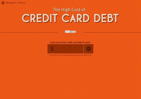 The High Cost of Your Credit Card Debt | INFOGRAPHICS | Scoop.it