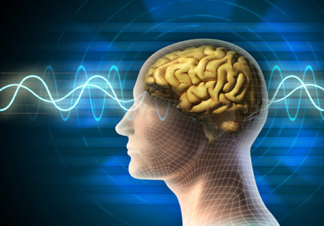 EPILEPTIC SEIZURES - A TYPE OF BRAIN DISORDER   Healthy Fitness Tips   Scoop.it