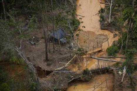 Illegal miners infest Venezuela's Amazon | Reuters | Sustain Our Earth | Scoop.it