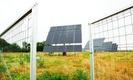 Solar power to be main energy source by 2017 | Arab News — Saudi Arabia News, Middle East News, Opinion, Economy and more. | Action Durable | Scoop.it