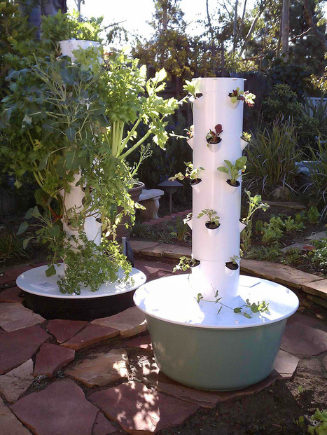 Vertical Farming – NSA Juice Plus The Tower Garden | The Reconnection Centre | Vertical Farm - Food Factory | Scoop.it