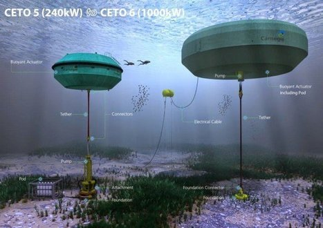 Energy Mafia Is On Its Knees: Australia First To Receive Ocean Wave Generated Zero-Emission Electricity | Christina Sarich | TruthTheory | Natural History, Environment, Science, and Technology | Scoop.it