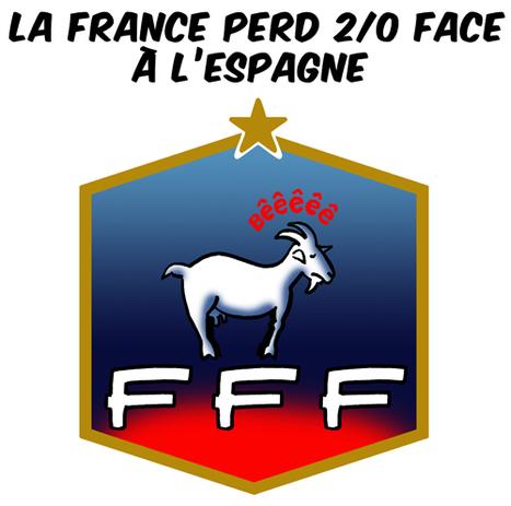La France eliminée en quart de finale de l'Euro | SandyPims | Scoop.it
