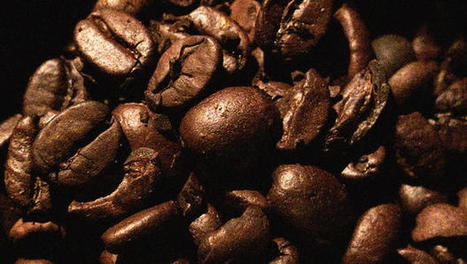The Future Of Coffee Looks Bitter And Pricey, Courtesy Of Climate Change | Climate change challenges | Scoop.it