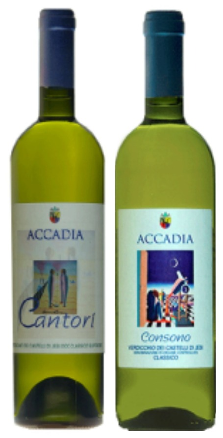 Azienda Agricola Accadia by John Szabo | Wines and People | Scoop.it
