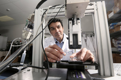 Next Out of the Printer, Living Tissue | leapmind | Scoop.it
