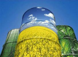 Destaca BBC Mundo producción de biocombustibles en Veracruz | Conoce Mexico | Scoop.it