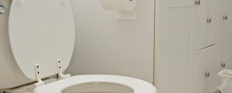 Tips to Eliminate Bathroom Germs - Sweet Home Maintenance Inc   House and Upholstery Cleaning Service   Scoop.it