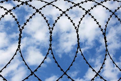 IBM fattens patent portfolio in cloud tech   Future of Cloud Computing and IoT   Scoop.it