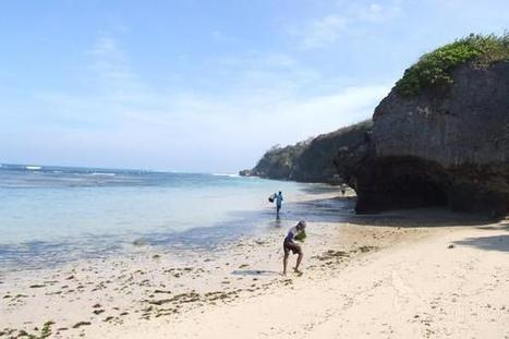 land for-sale bali all | Exotiqproperty | Exotiq Real Estate | Scoop.it