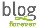 BlogForever presentation at MTSR 2013 | Vangelis Banos | Information Science | Scoop.it