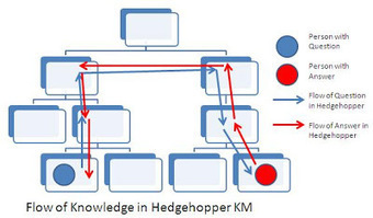 """Over the hedge"" - knowledge sharing the long way round 