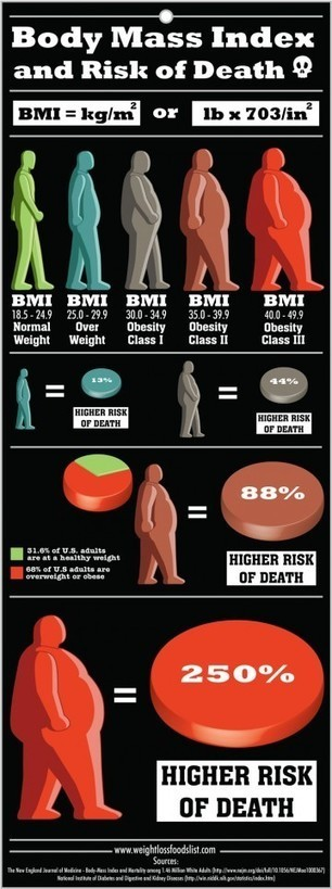 A High Body Mass Index Increases Risk Of Death   Live Healthy   Scoop.it