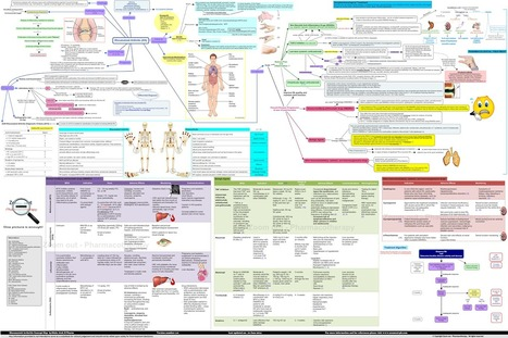 Zoom out - Pharmacotherapy: Rheumatoid Arthritis Concept Map | Pathophysiology | Signs and symptoms | Medications for RA | Medic'All Maps | Scoop.it