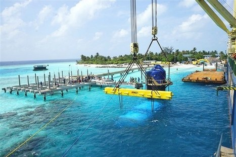"""""""World's largest"""" underwater restaurant will give diners a taste of the ocean 