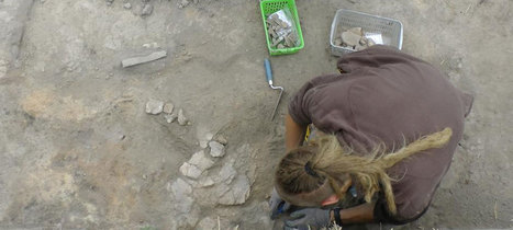 Bronze Age Hungary uncovered by archaeologists | Archaeology News | Scoop.it
