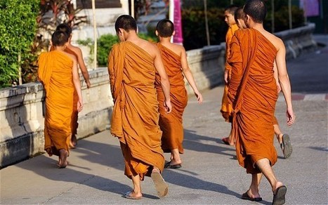 Buddhist monks arrested over Thai child sex abuse claims   Religion Around the World   Scoop.it