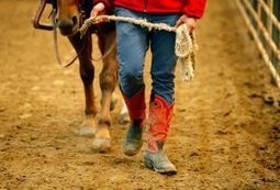 Equestrian program therapeutic for riders, Boys and Girls Ranch youth - Billings Gazette | Guest Ranch | Scoop.it