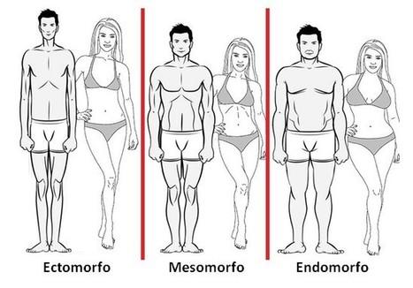 Variação Estratégica de Hidratos Com o Tipo de Corpo! | Mixordia de  temáticas | Scoop.it
