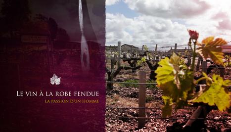 Le vin à la robe fendue : enfin, un web-documentaire sur le vin ! | Cabinet de curiosités numériques | Scoop.it
