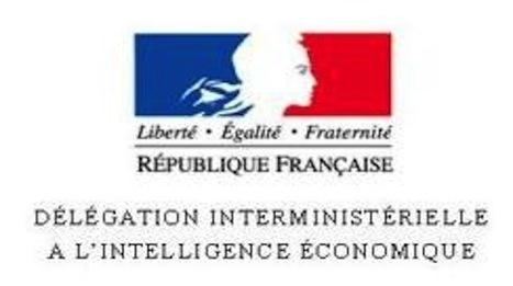 La D2IE appelée à disparaître | Portail de l'IE | François MAGNAN  Formateur Consultant | Scoop.it