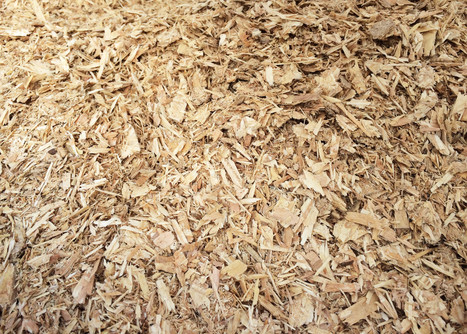 Approach Crocodile Packaging For Wood Chip Delivery | Crocodile | Scoop.it