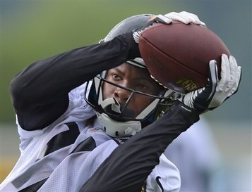 Steelers covet receiver in NFL draft; free-agent signings to help   NFL Fantasy Football   Scoop.it
