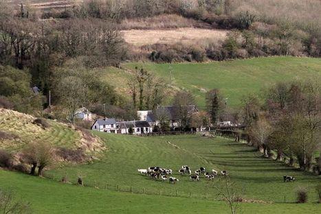 Réchauffement: les risques entrevus pour l'agriculture française | Questions de développement ... | Scoop.it